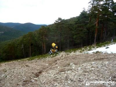 Siete Picos:Senda Herreros,Camino Schmid(Schmidt); ruta de senderismo; rutas madrid;trekking españa